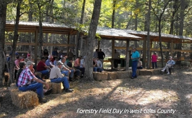 Forestry Field Day held in the west portion of Giles County